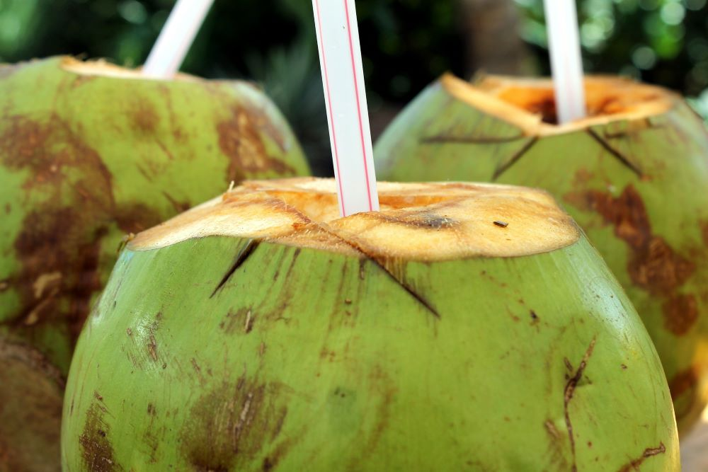 Coconuts with straws in them