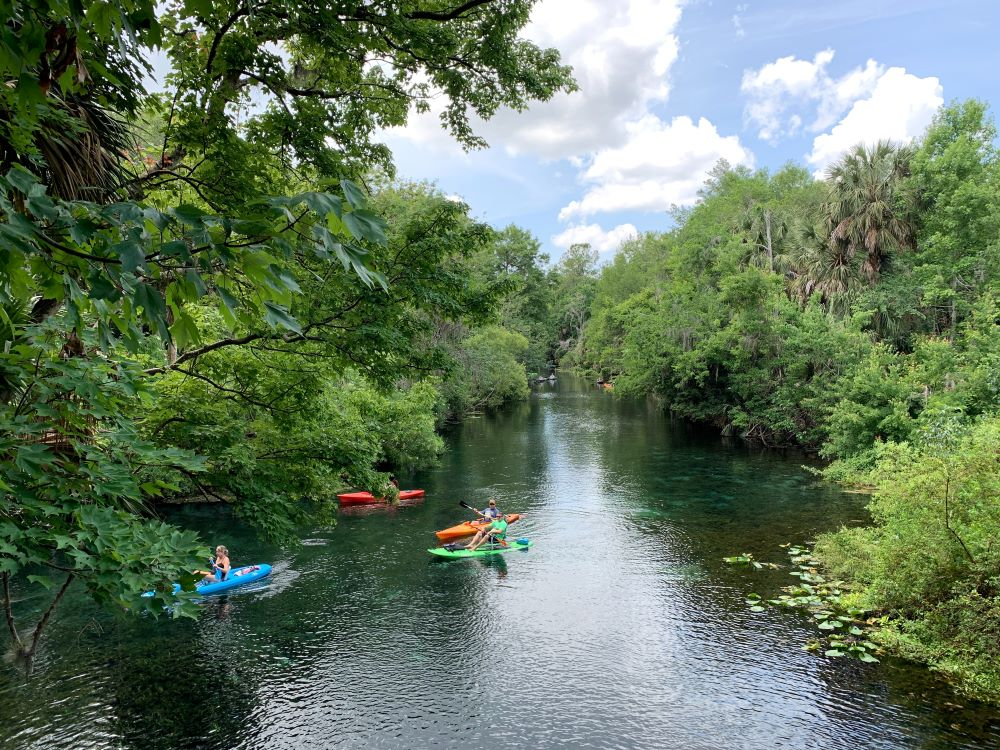 people kayaking in florida