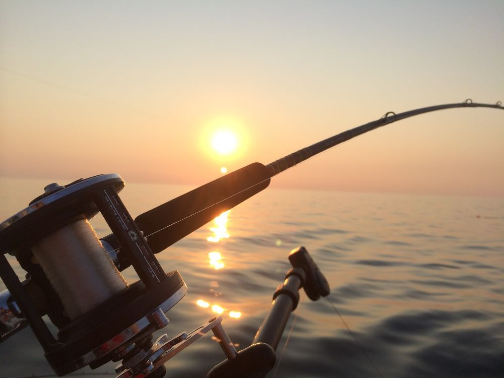 fishing pole with a sunset behind it