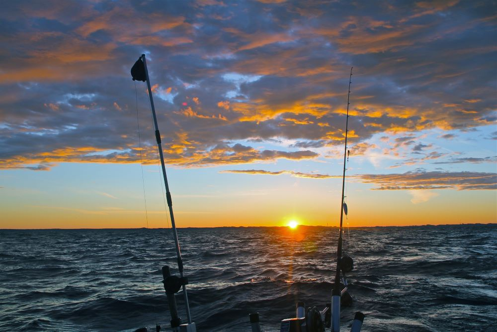 fishing poles on a boat