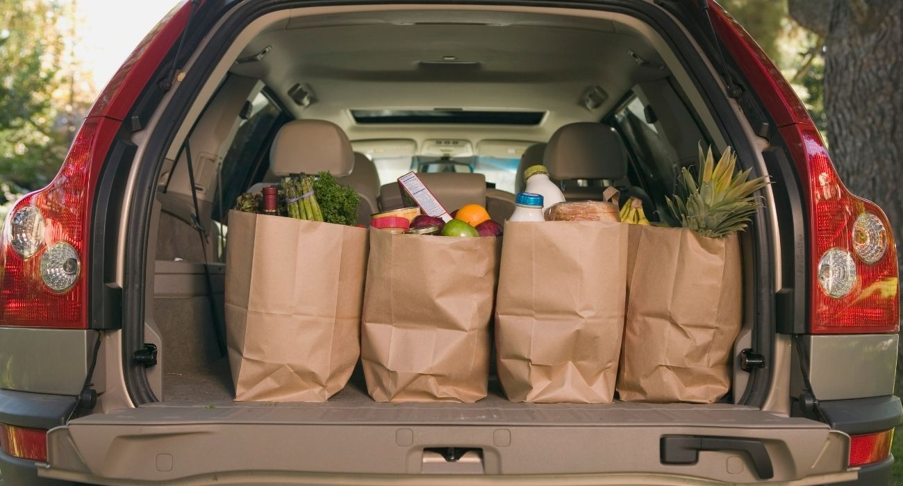 paper bags of groceries in the back of a vehicle